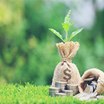 Using Green Bonds to Help Your Public Agency Further its Public Policy Goals